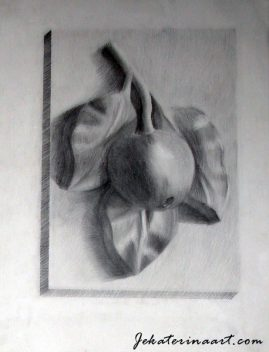 Pencil Drawings Katerina Krjanina Palm Coast Florida